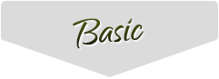 rhinogold basic header chart